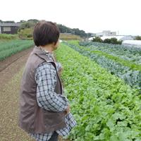 季節誌しずく「豊橋市 鈴木直美 なべちゃん葱」