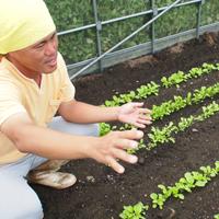 豊川市 菜園すコミニュケーション