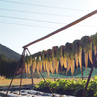季節誌しずく,豊根村農家