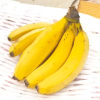 アイスタイルデザイン「季節誌しずく」田原産バナナ